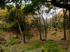 Haluwa芝公園(ハルーワ芝公園)901号室の画像