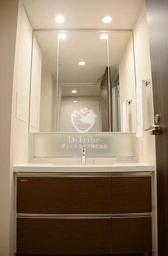ラフォンテ麻布十番[602号室]の独立洗面台参考写真 ラフォンテ麻布十番
