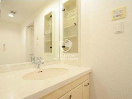 グランドパーク恵比寿センシュアス[6階号室]の独立洗面台 グランドパーク恵比寿センシュアス