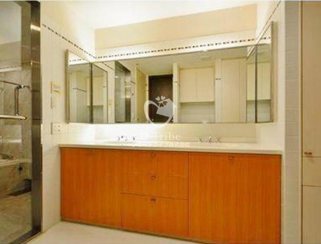 麻布霞町パークマンション[3階号室]の洗面所 麻布霞町パークマンション