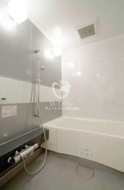 ルフォンプログレ南麻布[801号室]の浴室 ルフォンプログレ南麻布