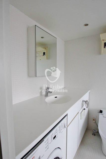 カスタリア恵比寿[302号室]の洗面所 カスタリア恵比寿