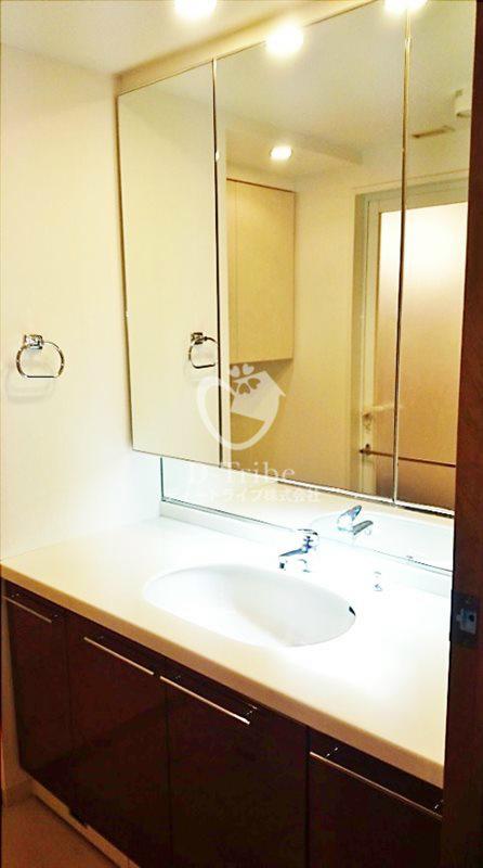ドレッセ目黒インプレスタワー[706号室]の洗面所 ドレッセ目黒インプレスタワー