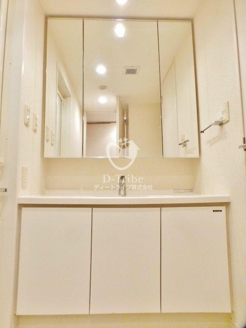 ルフォンプログレ南麻布[215号室]の独立洗面台 ルフォンプログレ南麻布
