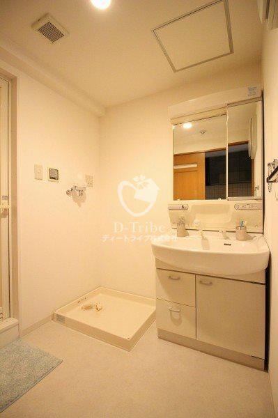 元麻布フォレストプラザ2[304号室]の洗面所 元麻布フォレストプラザ2