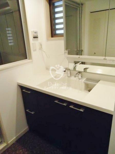 Tフラッツ南麻布[2階号室]の独立洗面台 Tフラッツ南麻布