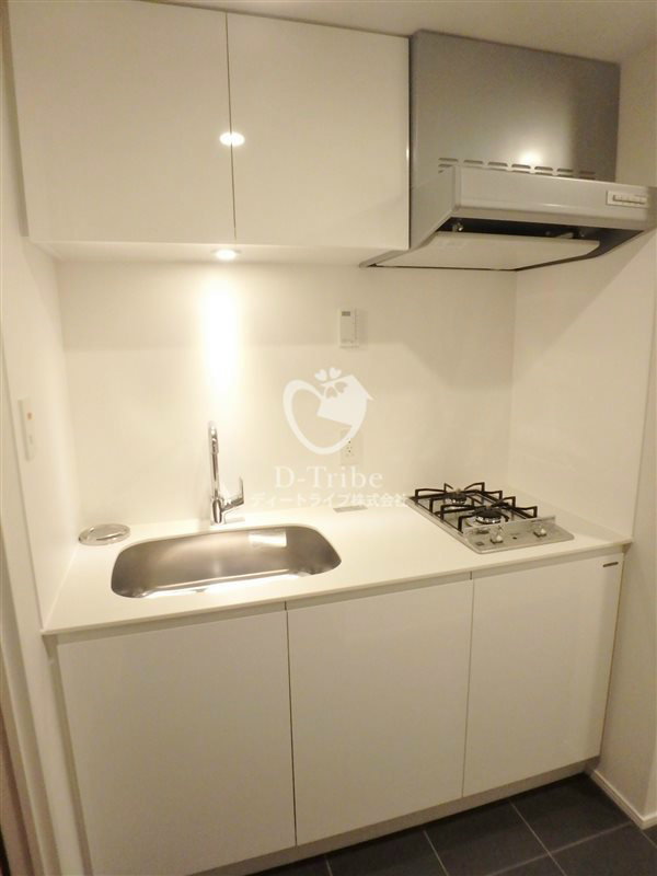 KDXレジデンス恵比寿[605号室]のキッチン エルスタンザ恵比寿南