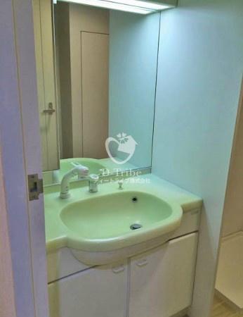 リバージュ品川[502号室]の独立洗面台 リバージュ品川