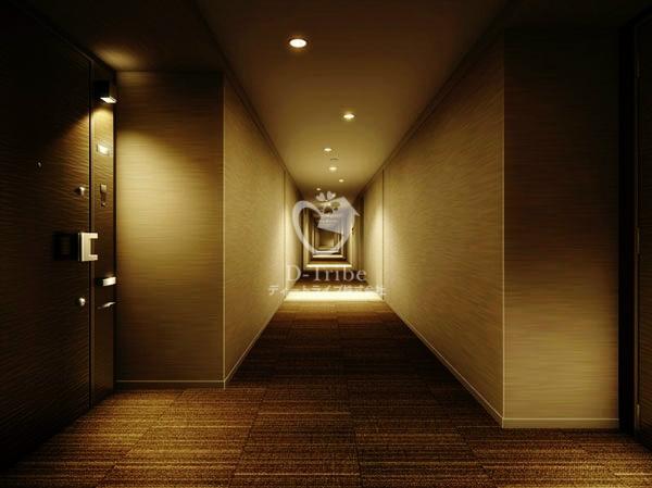 南青山マスターズハウス505号室の画像