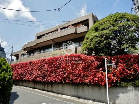 松濤第一ハウスの外観写真
