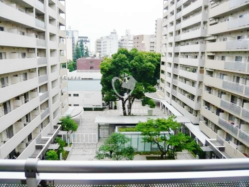 シティコート目黒605号室の画像